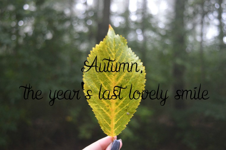 Autumn, the years last lovely smile